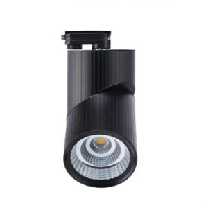 Crocus-300-350-353-66-Ray-Spot
